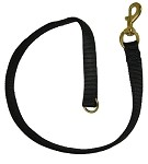 Top Dawg Web Leash